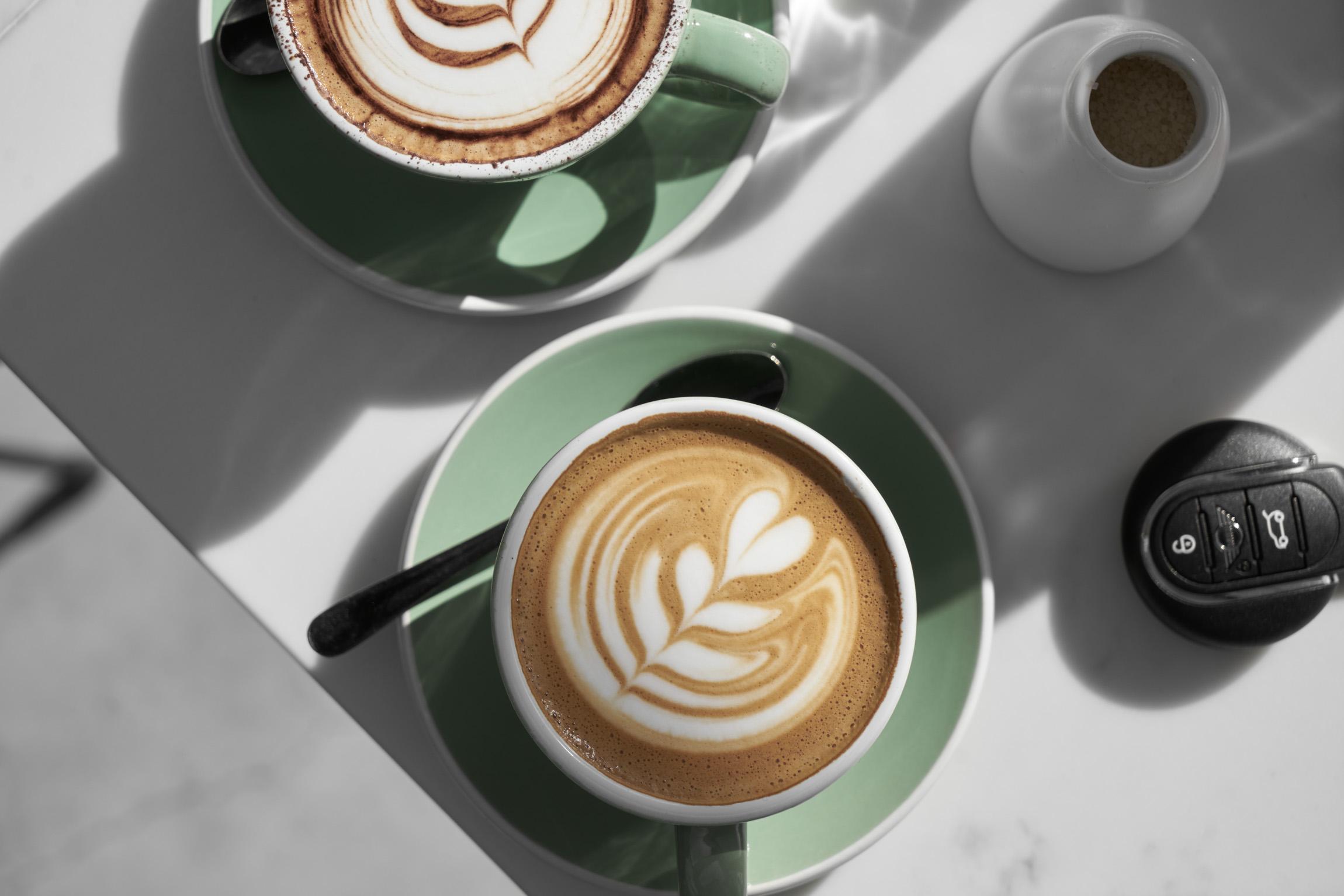 MINI Guide to Tasmania — Born in Brunswick cafe